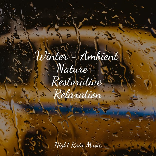 Winter - Ambient Nature - Restorative Relaxation