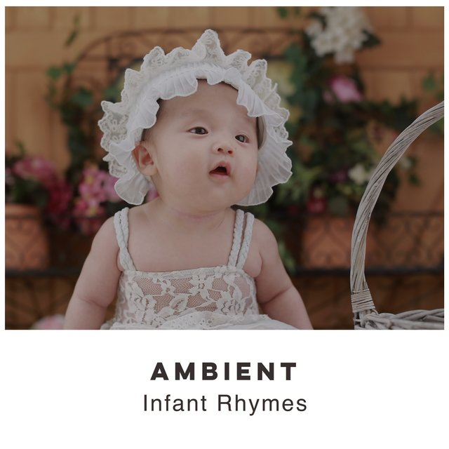 # 1 Album: Ambient Infant Rhymes