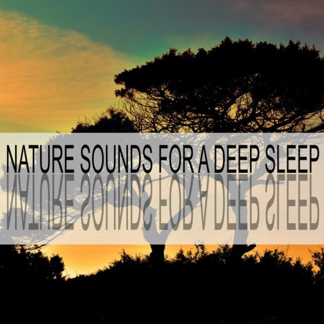 Nature Sounds for a Deep Sleep