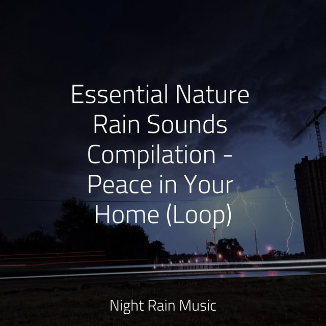 Essential Nature Rain Sounds Compilation - Peace in Your Home (Loop)
