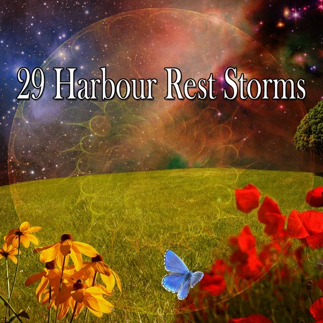 29 Harbour Rest Storms