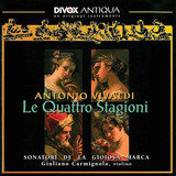Concerto for Strings in D Minor, RV 128: I. Allegro non molto