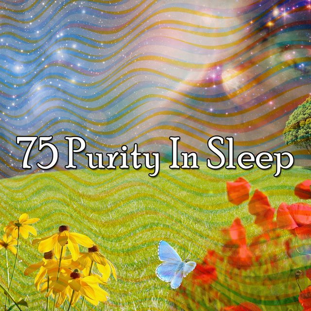 75 Purity in Sleep