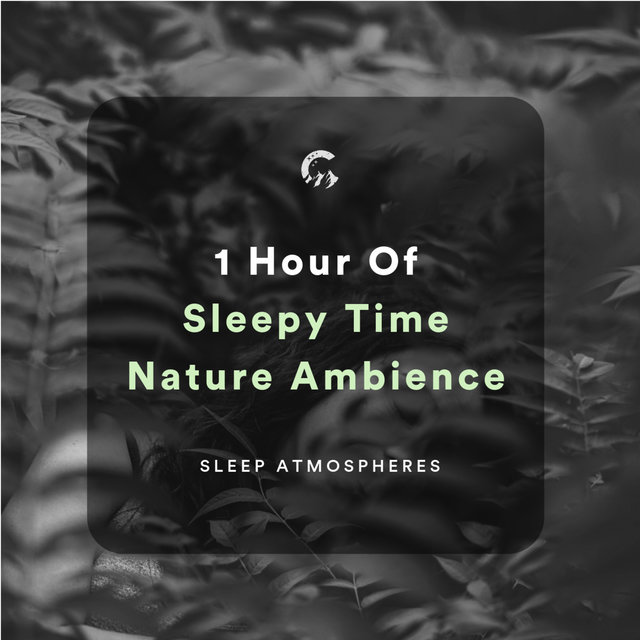 1 Hour of Sleepy Time Nature Ambience