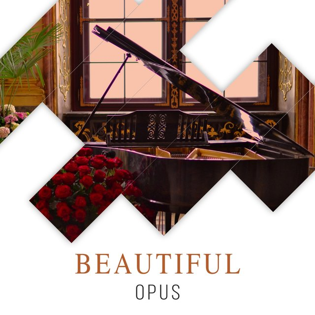 Beautiful Opus