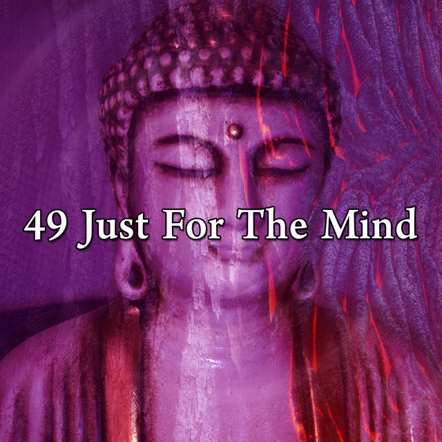 49 Just for the Mind