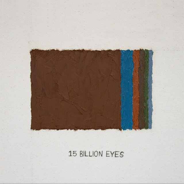 15 Billion Eyes
