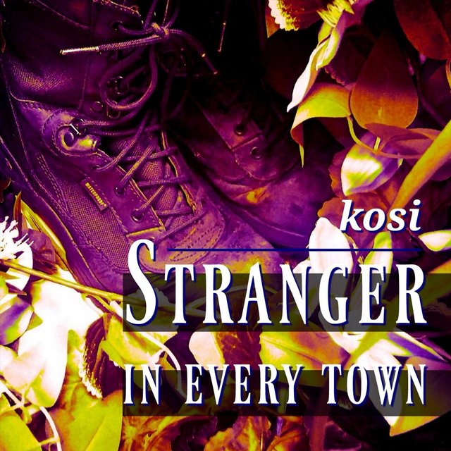 Stranger in Every Town