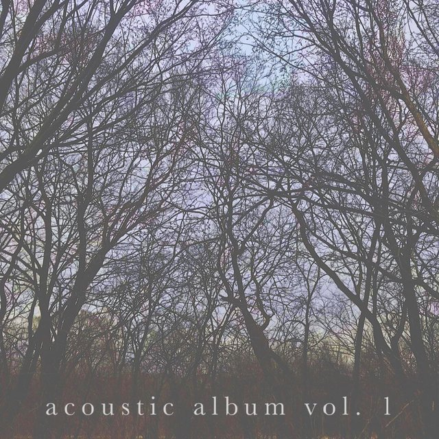 Acoustic Album, Vol. 1