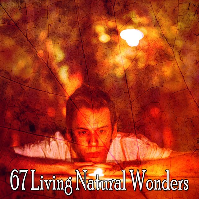 67 Living Natural Wonders