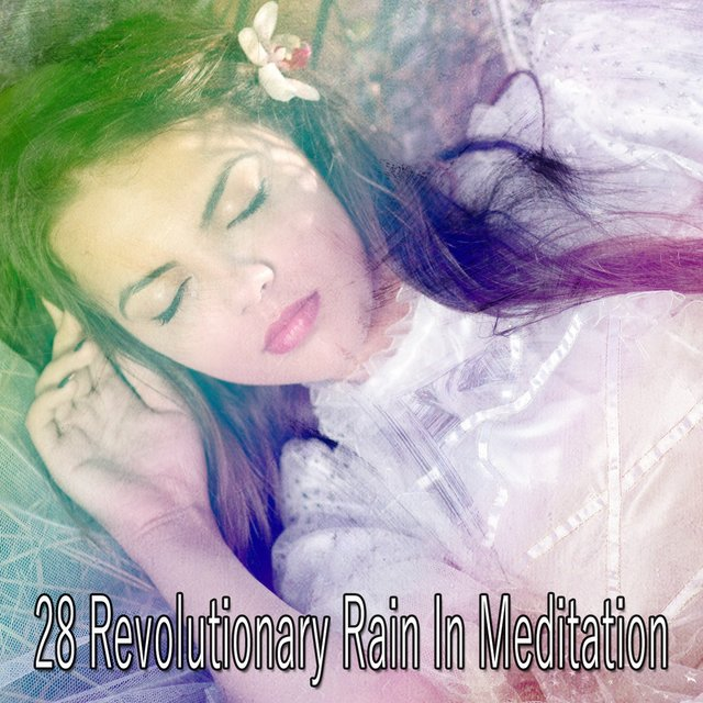 28 Revolutionary Rain In Meditation