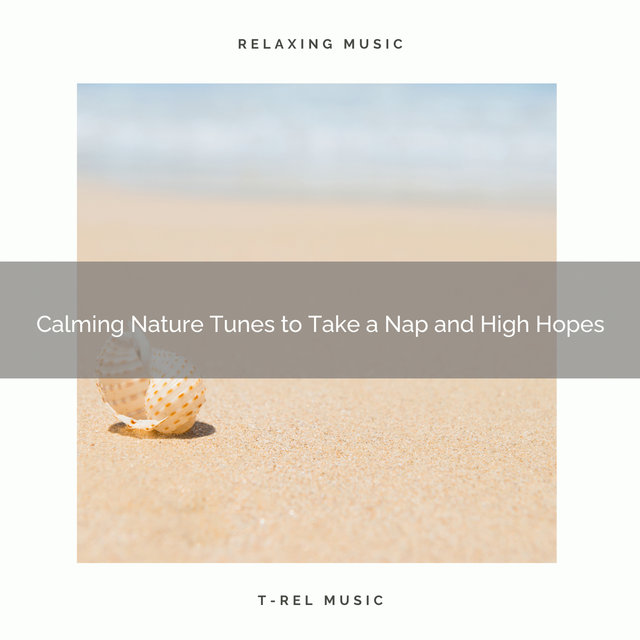 2020 Best: Calming Nature Tunes to Take a Nap and High Hopes