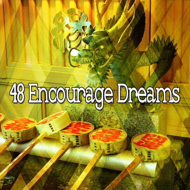 48 Encourage Dreams
