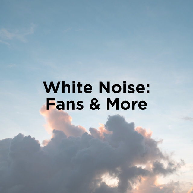 White Noise: Fan & More
