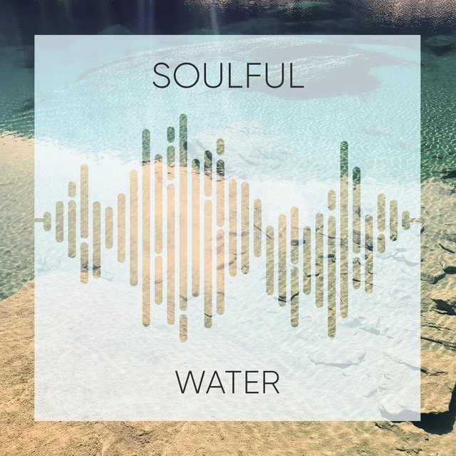 # 1 Album: Soulful Water