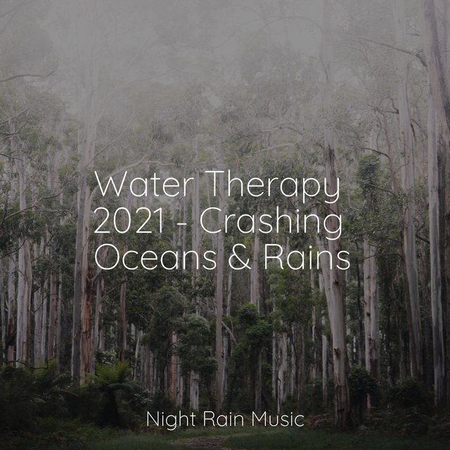 Water Therapy 2021 - Crashing Oceans & Rains