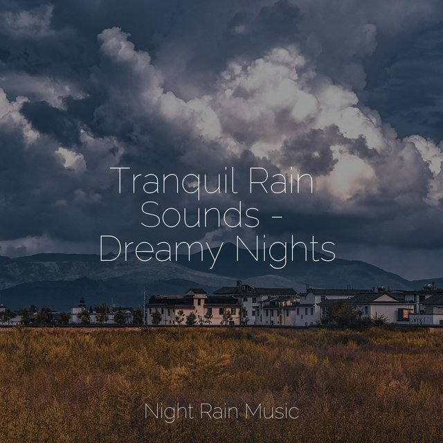 Tranquil Rain Sounds - Dreamy Nights