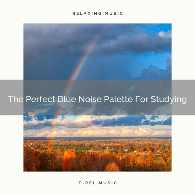 The Perfect Blue Noise Palette For Studying