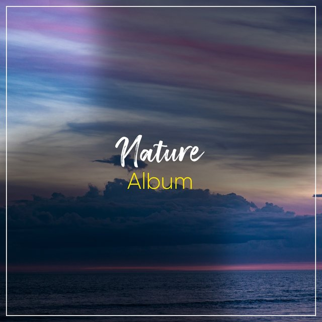 Reflective Tranquil Nature Album