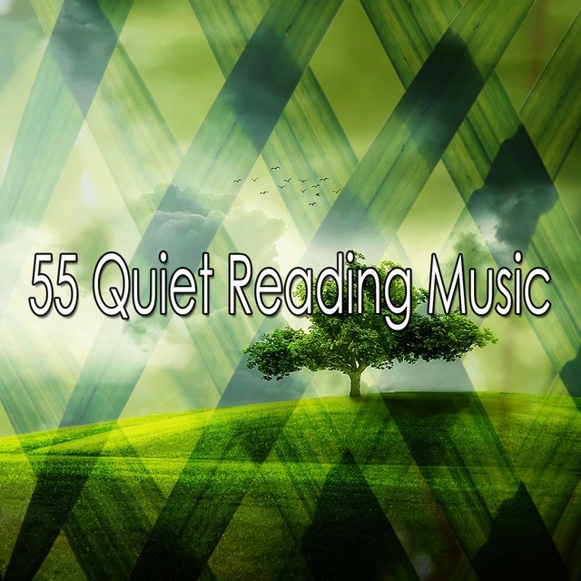 55 Quiet Reading Music