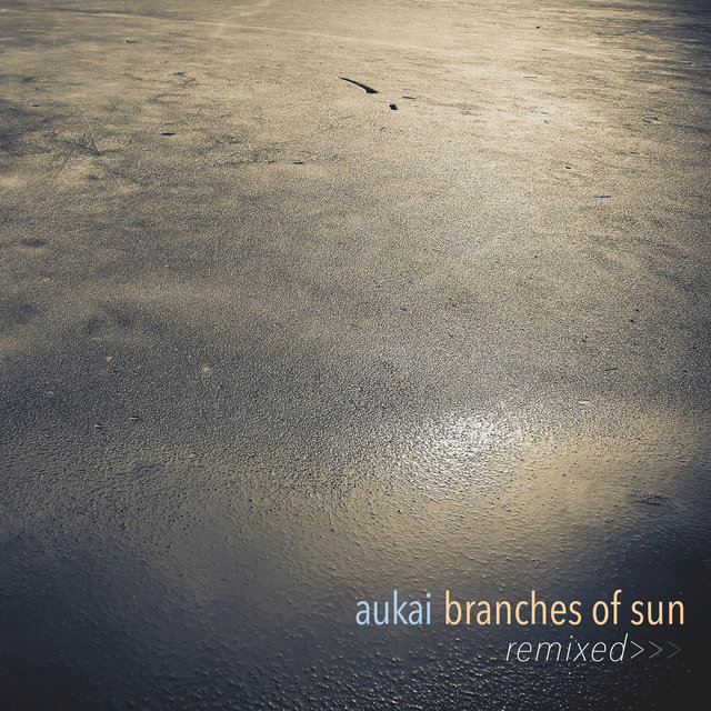 Branches of Sun Remixed