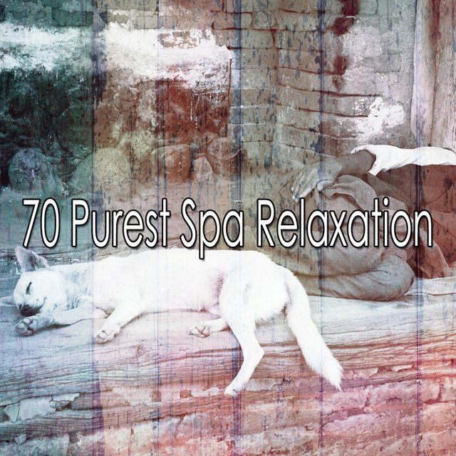 70 Purest Spa Relaxation