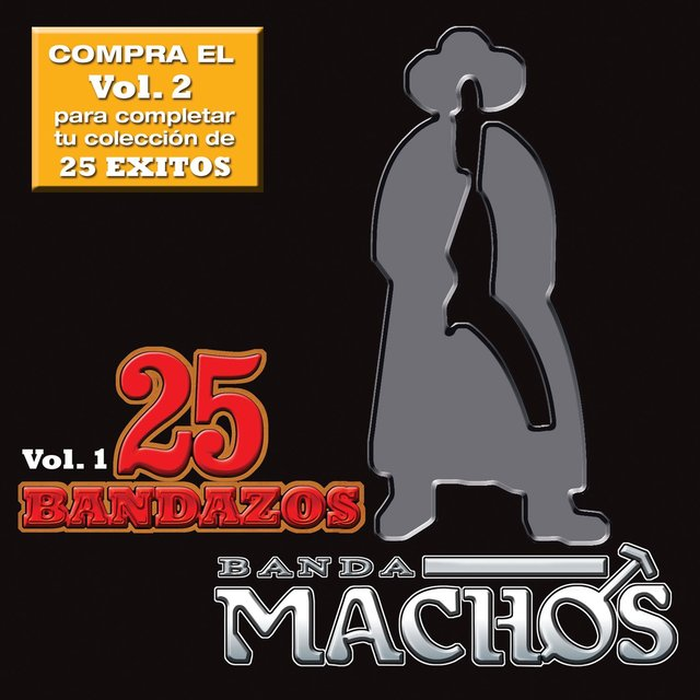 25 Bandazos de Machos (Vol. 1) (USA)
