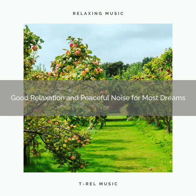 0001 Good Relaxation and Peaceful Noise for Most Dreams
