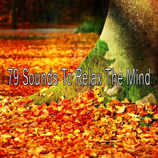 79 Sounds to Relax the Mind