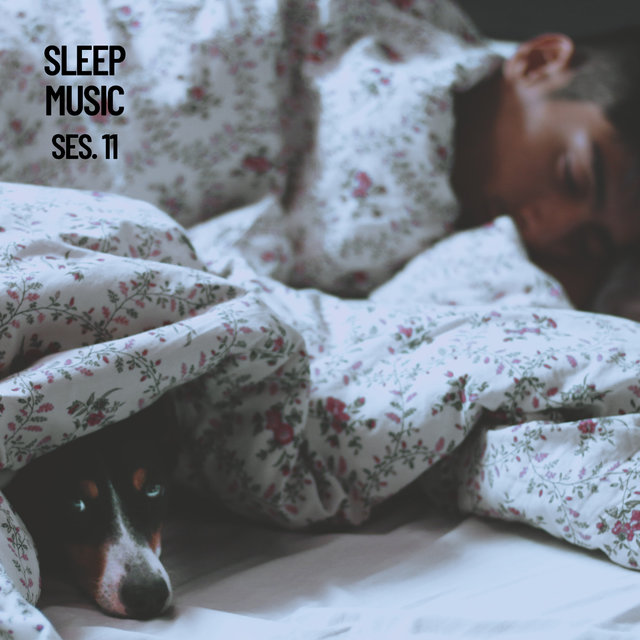 Sleep Music, Relax and Sleep Sounds and Music Session 11