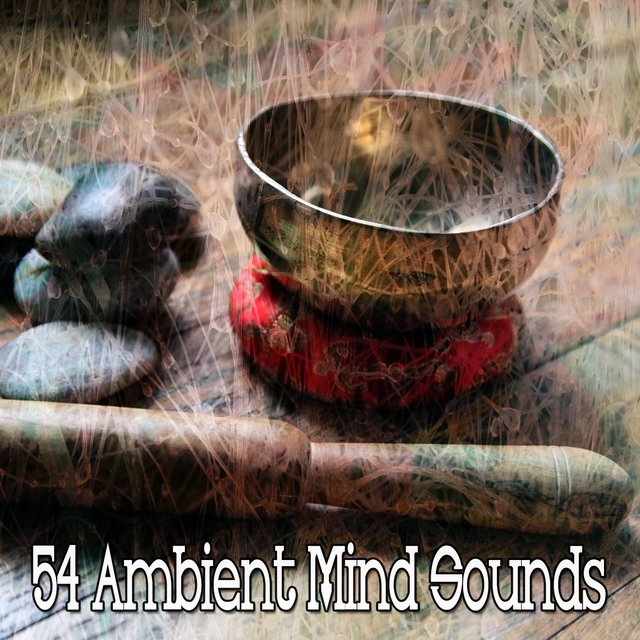 54 Ambient Mind Sounds