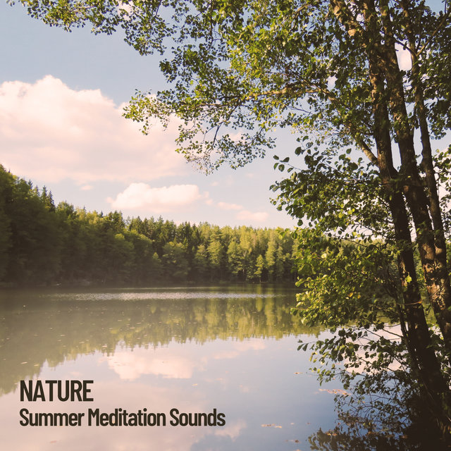 Nature: Summer Meditation Sounds