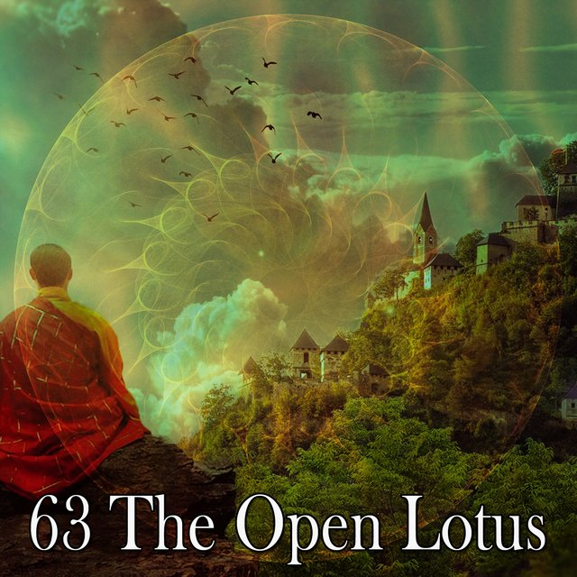 63 The Open Lotus