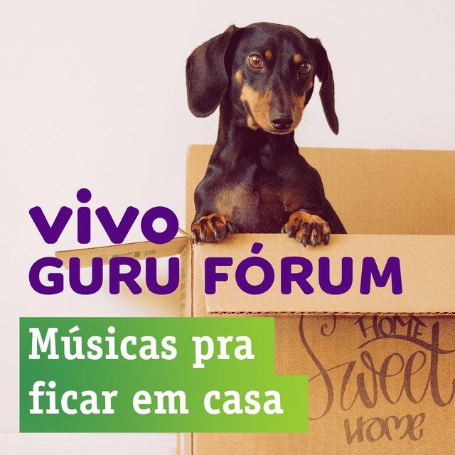 Cover art for album Pra Ficar Em Casa - Vivo Guru by TIDAL