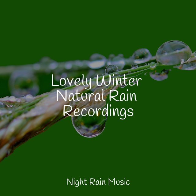 Lovely Winter Natural Rain Recordings