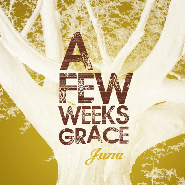 A Few Weeks Grace