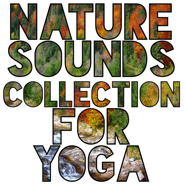 Nature Sounds Collection for Yoga - Soft Energy Music, Spiritual Healing, Serenity and Balance, Reflections, Deep Concentration, Yoga Lifestyle, Absolute Meditation
