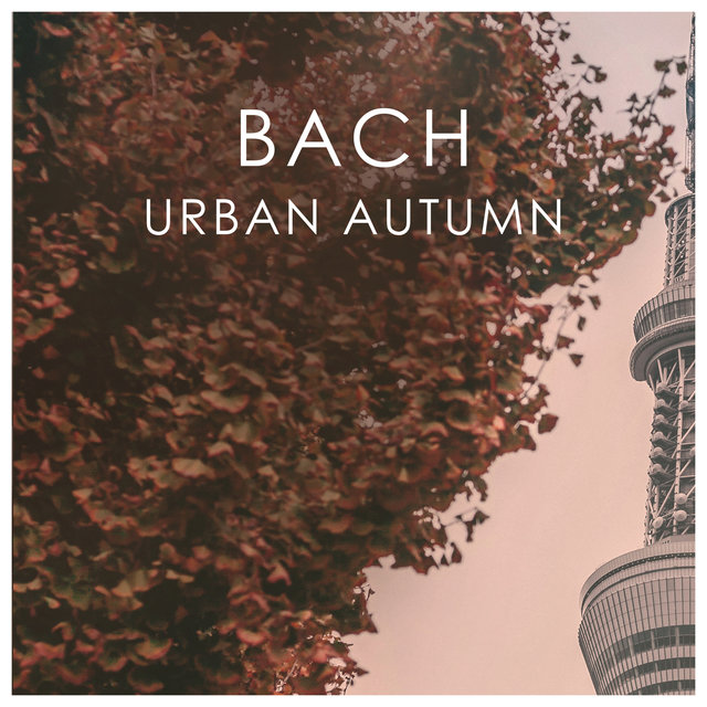 Bach Urban Autumn