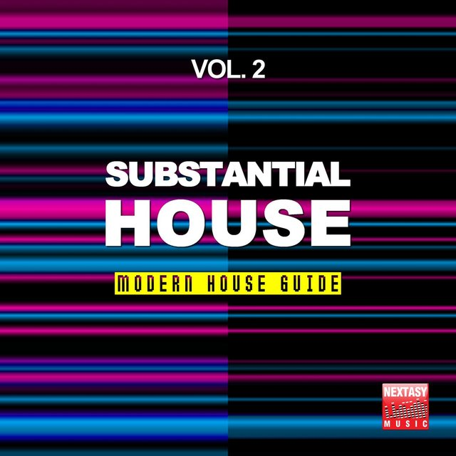 Substantial House, Vol. 2 (Modern House Guide)