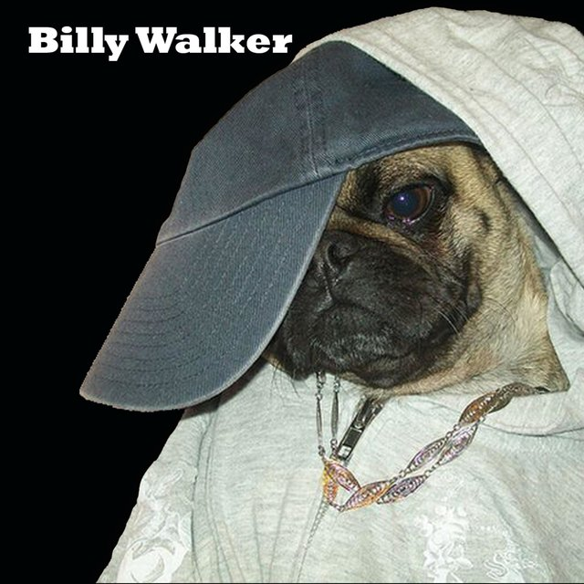 Billy Walker II: High in the Middle
