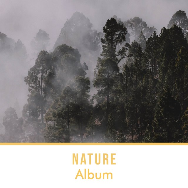 Soothing Rustic Nature Album