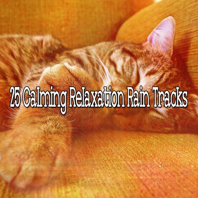 25 Calming Relaxation Rain Tracks