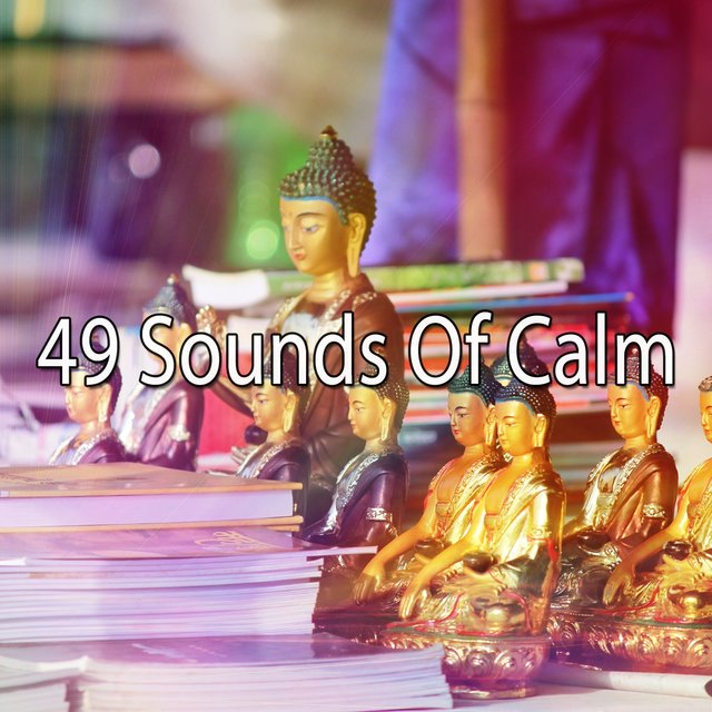 49 Sounds of Calm