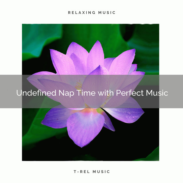 2020 Best: Undefined Nap Time with Perfect Music