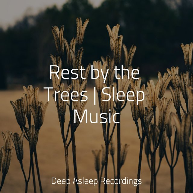 Rest by the Trees | Sleep Music