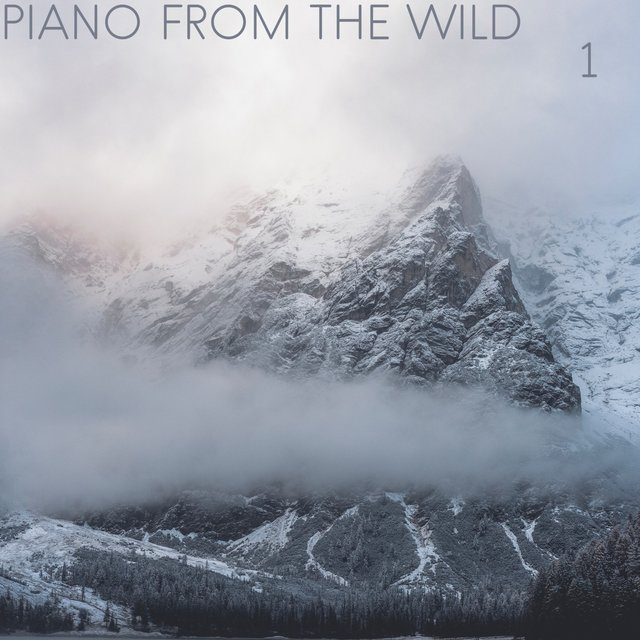 Piano from the Wild, Vol. 1