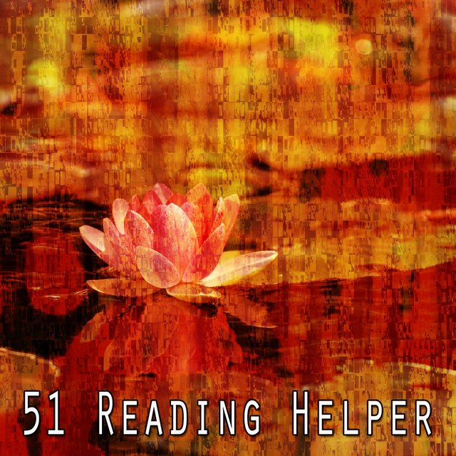 51 Reading Helper
