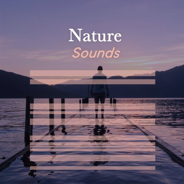 Healing Nature Sounds
