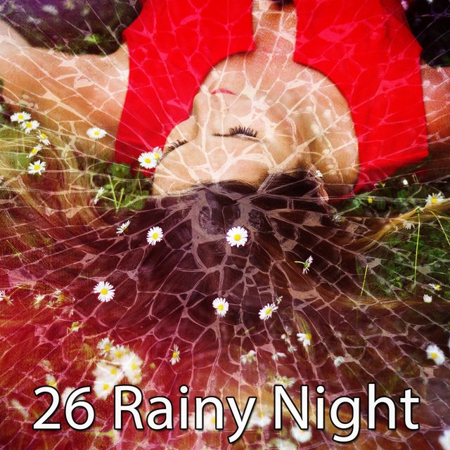26 Rainy Night