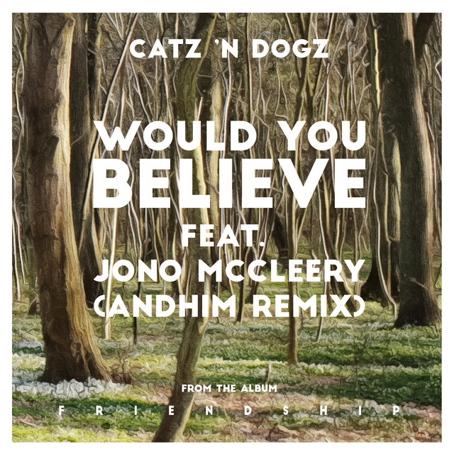 Would You Believe feat. Jono McCleery